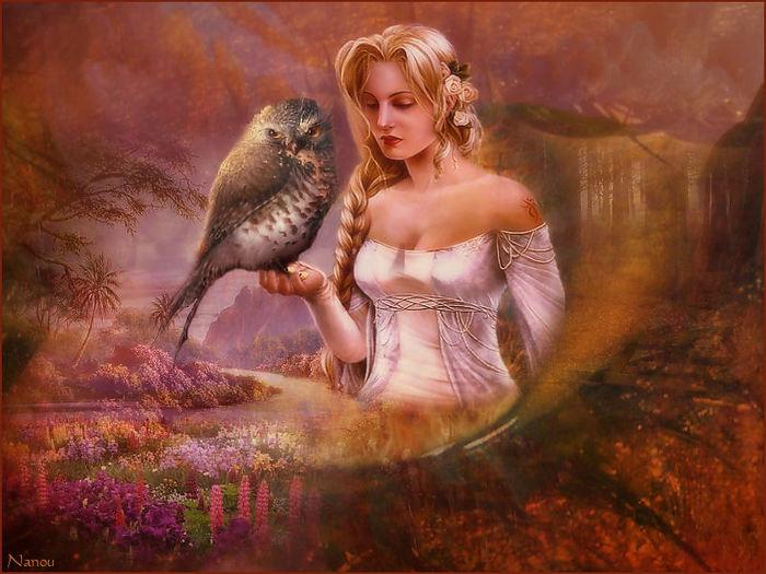 [Poésie] Les oiseaux...